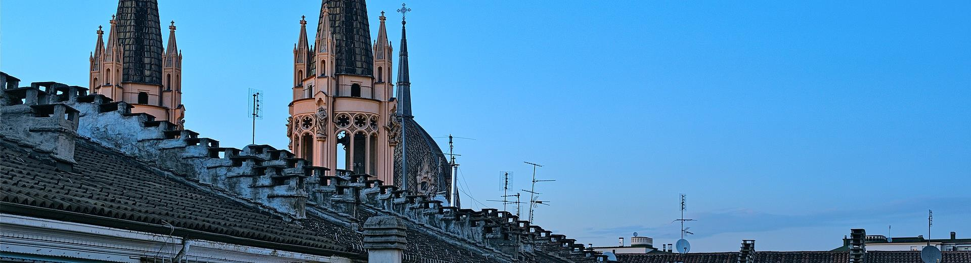 Roofs in Turin